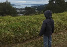 Read more about the article I recommend a family walk up Munibung Hill, says father of four