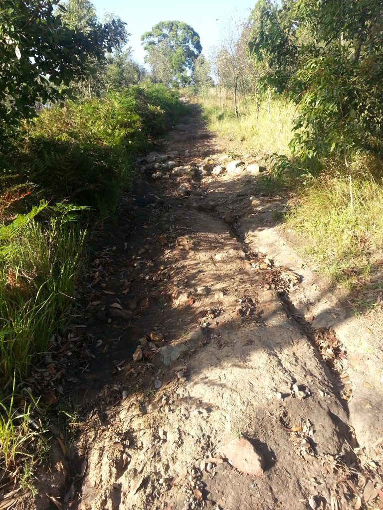Erosion control is urgently needed