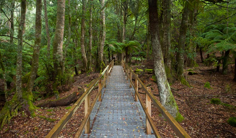 You are currently viewing A park or protected area: what's it worth?  Is it worthy?