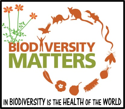 More than ever biodiversity matters – Report