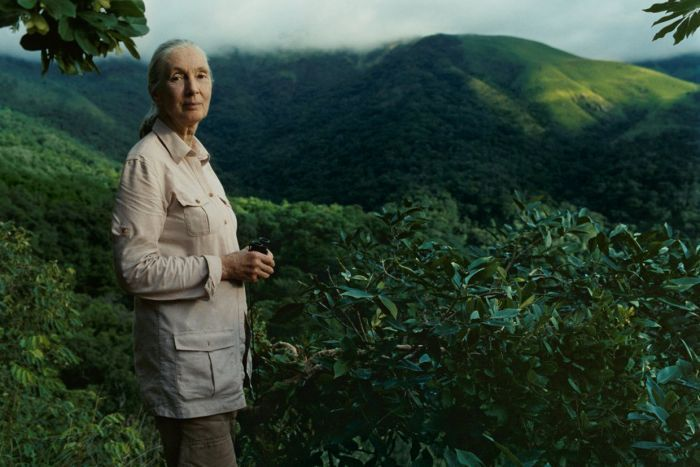The jolt we seem to need to start behaving in a different way, says Jane Goodall