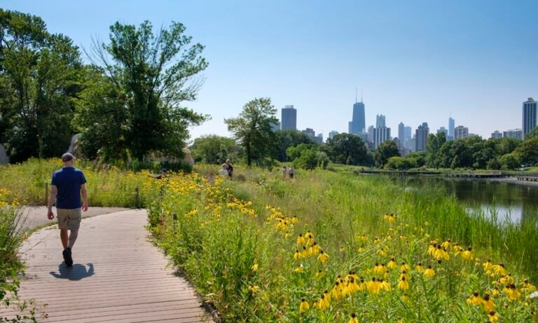 Read more about the article Thrivability: Making space for nature
