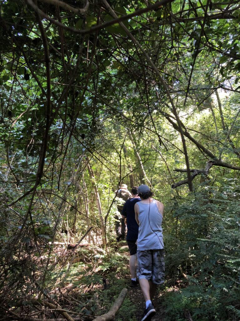 Adventure tale at Munibung Hill