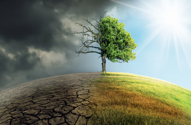 Read more about the article Four pronged approach to dealing with climate eco-stential challenge