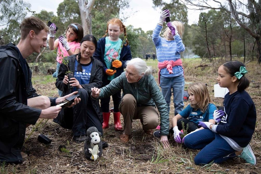 Read more about the article We must develop a new relationship with the natural world says Jane Goodall