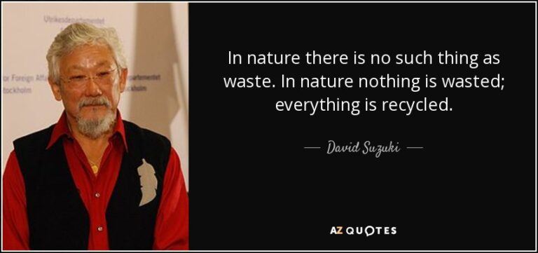 Read more about the article Waste Is A Human Invention … There Is No Waste In Nature