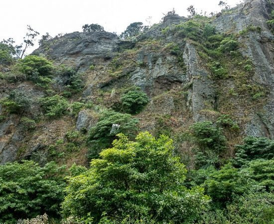 Cliff face, West side 2
