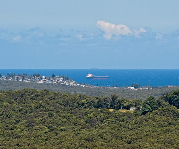 Redhead centre left with ships at anchor off the coast